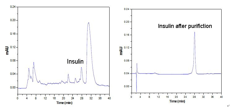 purification case of insulin